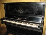 фортепиано (Петроф,  Вайнбах или Рёниш)